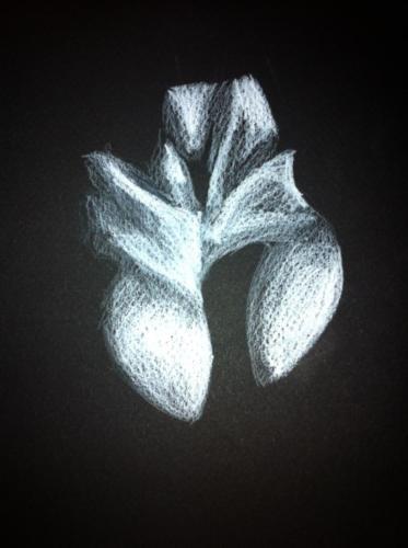 crayon blanc sur papier canson noir